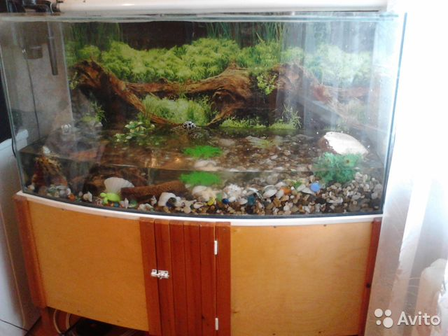 Тумбу под аквариум б у