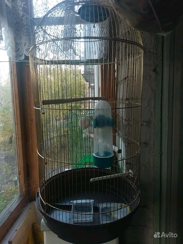 Клетка для птиц в Москве - фотография № 1