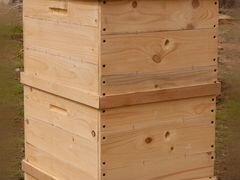 найдете информацию купить пчелопакет в новошахтинске рецепт Кукурузные