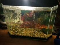 Продам аквариум 52 литра с крышкой и грунтом