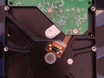Жесткий диск Western Digital WD Blue 250 GB WD250