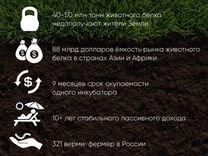 Инвестиции в производство Доходность 128 годовых